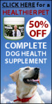 Best Canine Supplement