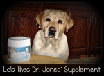 Dr. Jone's Complete Dog Supplement -