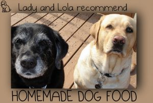 Lady and Lola love these homemade dog food recipes.