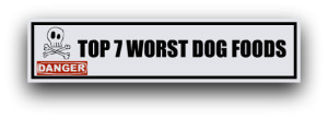 Top 7 worst dog foods