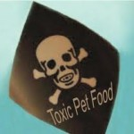 Dangerous Dog Food – What Not To Feed Your Dog