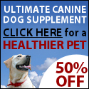 best dog supplement