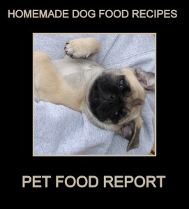 June 2008 021 271x300  Homemade Dog Food Recipes    Good and Bad Dog Food