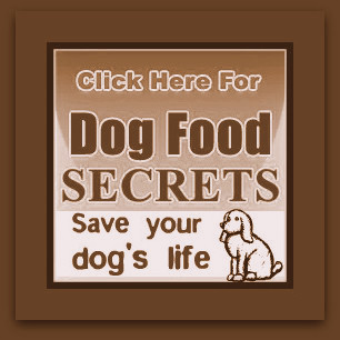 Dog Food Secrets Review