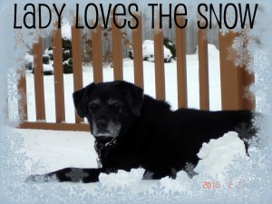 Lady in the Snow