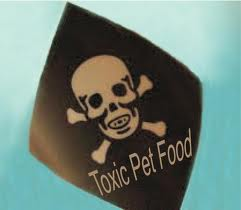 toxic pet food, dangerous dog food