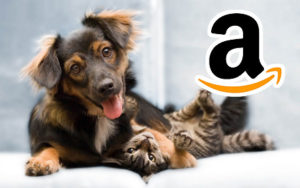 dog food brands @ Amazon.com