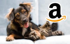 dog food brands @ Amazon.com